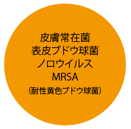 皮膚常在菌・表皮ブドウ球菌・ノロウイルス・MRSA・(耐性黄色ブドウ球菌)
