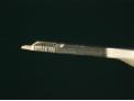 ピンニックスライト商品画像0.8mm画像2