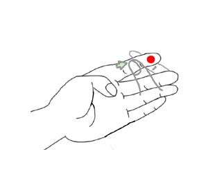 ピンニックスライトの使用方法STEP3
